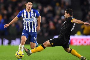 The emergence of Steven Alzate has been a huge plus for Brighton this season